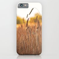 Field Of Gold iPhone 6 Slim Case