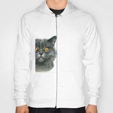 British shorthair cat  G120 Hoody