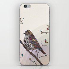 Kaleidoscape iPhone & iPod Skin