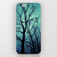 Blue Winter Trees iPhone & iPod Skin