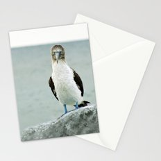blue-footed booby Stationery Cards