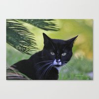 Living The Wild Life Canvas Print