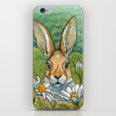 Funny bunnies - with Chamomiles 889 iPhone & iPod Skin