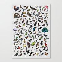 100 Birds Poster Canvas Print