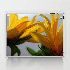 Sun 2 Laptop & iPad Skin