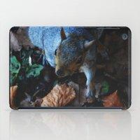 Autumn Squirrel  iPad Case