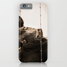 How Now, Brown Cow? Slim Case iPhone 6s