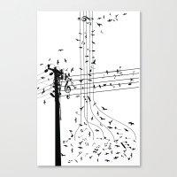 Morning song birds Canvas Print