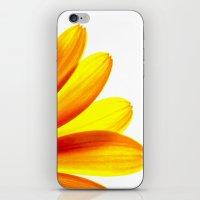 Yellow Daisy Petals Macr… iPhone & iPod Skin