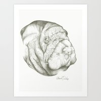 The Mighty Manatee  Art Print