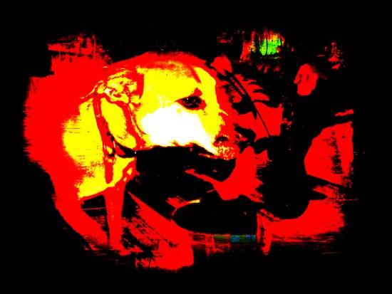 Busy Dog Art Print