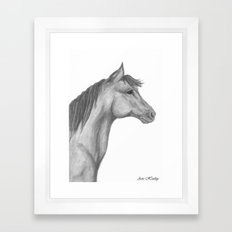 Horse Profile by Ave Hurley Framed Art Print