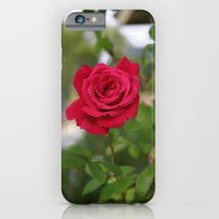 Rose 1 iPhone 6 Slim Case