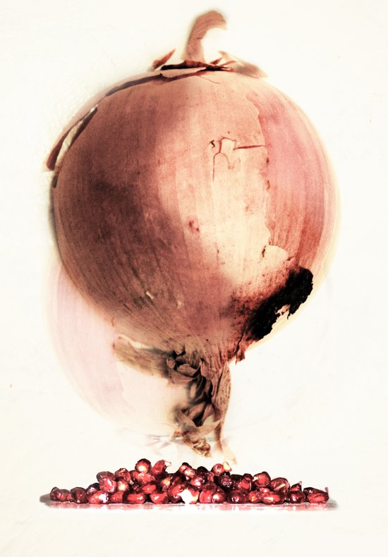 Onion story Canvas Print