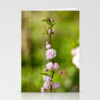 Flowering Almond Blossoms Stationery Cards