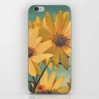 H. Maximiliani, Prairie … iPhone & iPod Skin