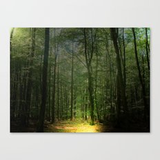 Zauberwald  Canvas Print