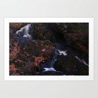 Waterfall Wyandotte Fall… Art Print