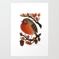The Robin's Acorn Art Print