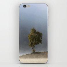 Beautiful dripping fragments iPhone & iPod Skin