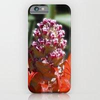 Succulent Blossom I iPhone 6 Slim Case