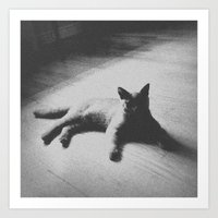 Art Print featuring Cat by Dnzsea