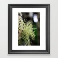 Filaments Framed Art Print