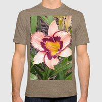 Pink Daylily Growing In … Mens Fitted Tee Tri-Coffee SMALL