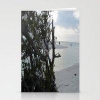 Shell Trees Stationery Cards