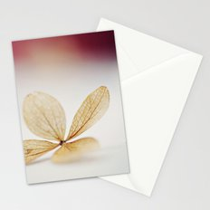 Sheer Stationery Cards