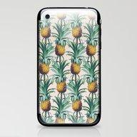 Pineapple Trellis iPhone & iPod Skin