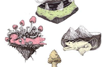 Art Print - dog averywhere - franciscomffonseca