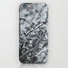 Silver Flower Winter iPhone 6 Slim Case