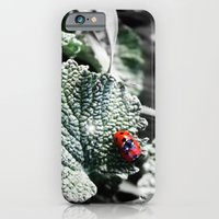 iPhone & iPod Case featuring Lady Bugs Caught In Action by ARTNOIS Magazine
