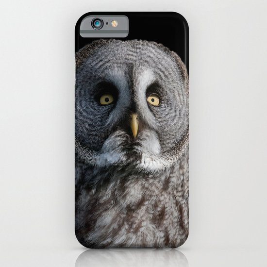 GREY OWL iPhone & iPod Case