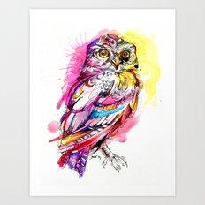 Neon Northern Pygmy Owl Art Print