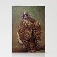 Young Red Tail Hawk Stationery Cards