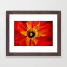 abstract macro Framed Art Print