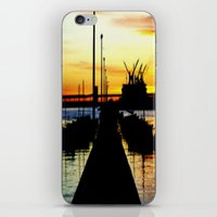 Light shines over the Harbour iPhone & iPod Skin