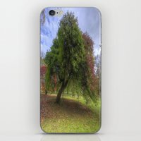 Waiting For Fall iPhone & iPod Skin