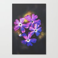 Watch Me Unfold Canvas Print