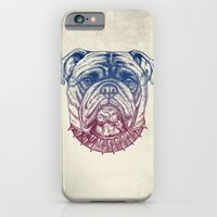 iPhone & iPod Case featuring Gritty Bulldog by Rachel Caldwell