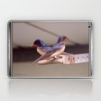 Barn Swallows With Nest Materials Laptop & iPad Skin