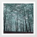 cold forest VI Art Print