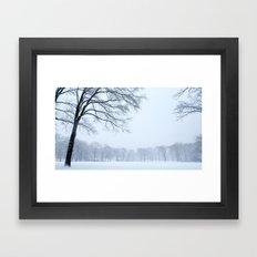 Snow in Central Park IV Framed Art Print
