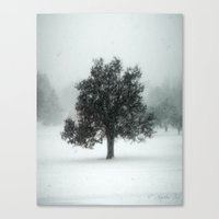 The Loner Canvas Print