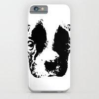 Curious French Bulldog iPhone 6 Slim Case