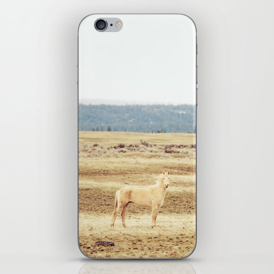 Two Oregon Horses iPhone & iPod Skin