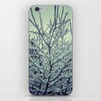 Wintree iPhone & iPod Skin
