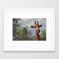 Closer, closer, how about now? Framed Art Print